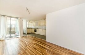 Islington CANONBURY 2 double bedroom house, private garden,wood floor, lots of storage space shower