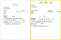 Resume Design and Formatting Services