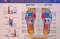 REFLEXOLOGY WITH ION DETOX:  REG: $60,  SUPERSPECIAL: $20