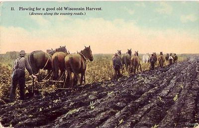 PLOWING FOR A GOOD OLD WISCONSIN HARVEST NO.11
