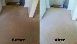 True Deep Carpet Cleaning