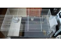 Dwarf rabbit or Guinea pig encloser