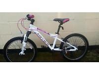 Girls Carrera bike age 7-10