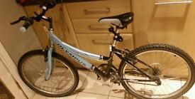 Girls ladies olympus mountain bike