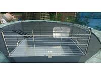 Indoor Guinea pig cage ferplast
