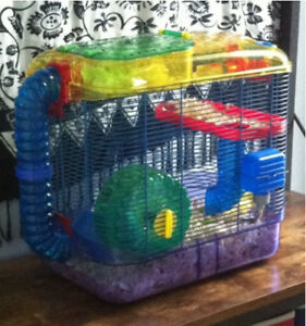Hamster with cage, accessories and supplies