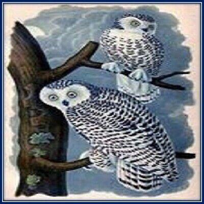 30 Custom Snowy Owls Personalized Address Labels