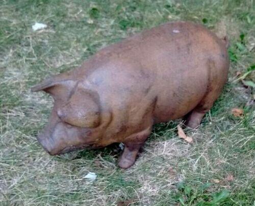 Pig Large Heavy Cast Iron Cabin Lodge Man Cave Home Garage Decor