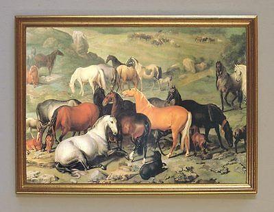Lipizzaner Stutenherde Fohlen Pferde Gemälde Hamilton K&K 38 Faks im Goldrahmen