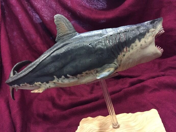 Pnso Megalodon Prehistoric Sharks Model Toy Scientific Art