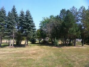 3.6 ACRES WITH DEEDED LAKE ACCESS IN BAINSVILLE Cornwall Ontario image 3