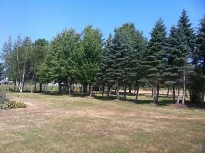3.6 Acres with Deeded Access to St Lawrence River, Bainsville Cornwall Ontario image 4