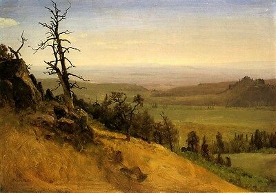 Nebraska Territory Wasatch Mountains 1859 Usa America By Albert Bierstadt Repro