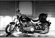 Harley Davidson Street Bob 2007 (PRICE DROP) Glenelg South Holdfast Bay Preview
