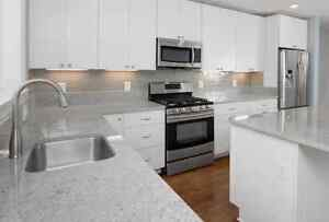 Metro 10' x 10' kitchen - Financing available - $40/MTH