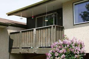 Large Bright 1 Bedroom Basement Suite~~ Park Meadows Area