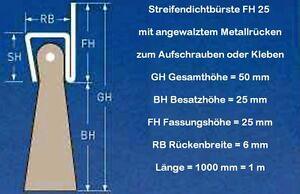 1 m Türbürste ROSSHAAR in ECHT-MESSING-Fassung Bürstendichtung Streifenbürste