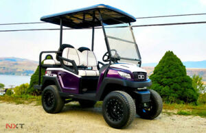 NXT Custom Golf Cart R4- Purple Panther