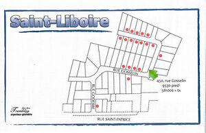 Terrain à vendre Saint-Liboire