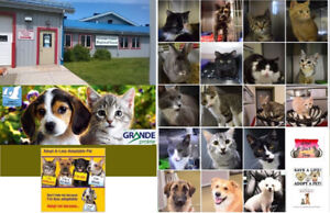 Grande Prairie Regional Animal Care Facility