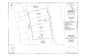 2.5 acre waterfront lots in Nasonworth – Reduced for spring!