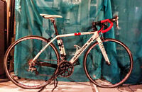 Speed Bike - Argon 18 -KR36