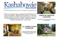 monthly cabin rental