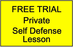 Learn Faster Private Self Defense Lessons! FREE TRIAL LESSON! Peterborough Peterborough Area image 2