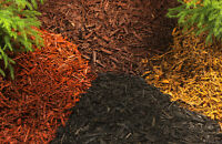 GARDEN BED MULCHING-------------experienced! best rates in town!