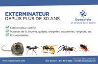 EXTERMINATEUR EXPERASITAIRE 'ARAIGNÉES' (OUEST DE L'ÎLE)