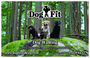 West Vancouver Dog Walking Services-Dog Fit