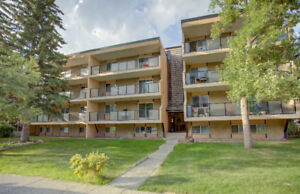 Charming and Completely Updated Condo!