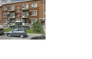 FOR RENT APARTMENT A LOUÉ APPARTMENT MONTREAL