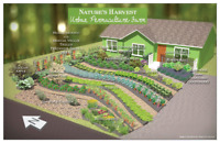 Permaculture - Edible Landscaping