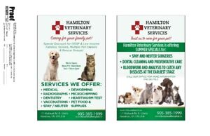 Animal hospital and veterinary services
