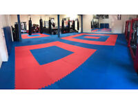 30 x 20mm Basic Jigsaw Mats Red/Blue for Fitness, Martial Arts, Karate, Kickboxing, CE certified
