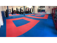 50 x 20mm Basic Jigsaw Mats 1m2 Red/Blue Martial Arts Exercise Keep Fit Kickboxing Karate Yoga TKD