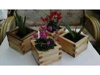 Planters, wheelbarrows, bird boxes