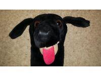 Novelty Headcover 3 Wood/ or 430 cc driver ..black labrador. House Trained ;o)