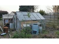 Greenhouse 8x10'