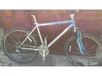 Mountain bike. .specailized