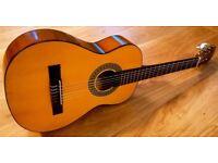 1/2 Size Classical Guitar