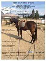 3-DAY EQUINE JOINING-UP CLINIC