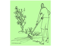 Reliable, friendly gardener for Spring tidy ups and maintenance in Bristol