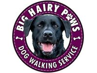 Dog Walker - Big Hairy Paws Dog Walking Service