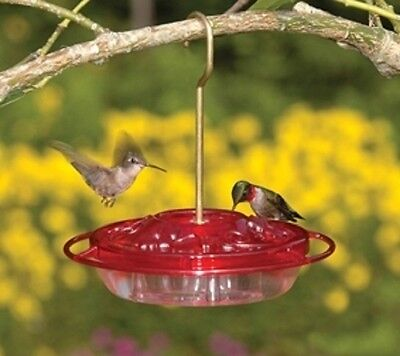 Fancy Feeder - ASPECTS Little Fancy Rose HummZinger, 8 oz, HUMMINGBIRD FEEDER, Made In USA   dm