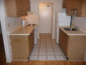 Beautiful Jr. 1 Bedroom Apartment in Stirling