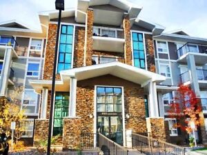 EXECUTIVE 2-BDRM CONDO W/ 2 TITLED PARKING STALLS IN TERWILLEGAR