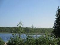 45.5 Acres On Mud Lake