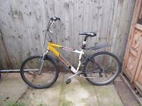 Cheap Bicycle for sale £40 Hackney, East London